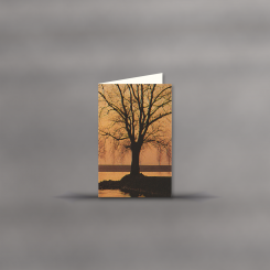 Cartes de deuil, double portrait, Atmosphère d'un soir