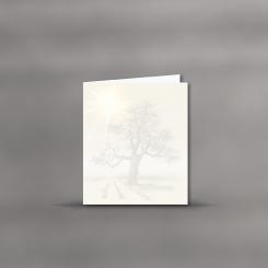 MAYSPIES® Premium Trauerbogen, Lebensbaum